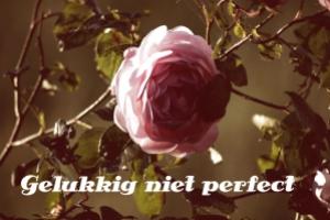 gelukkig niet perfect